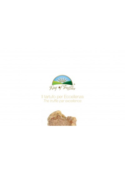Brochure King of Truffles